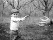 focení dětí v sadu v brně